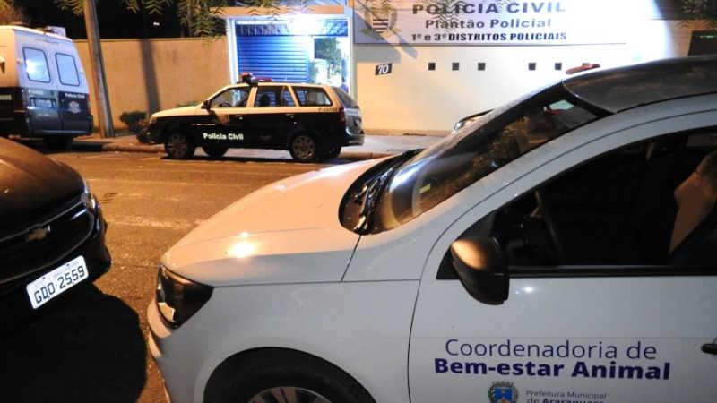 Caso de maus-tratos foi registrado no Plantão Policial de Araraquara (Foto: Walter Strozzi/ACidade ON)