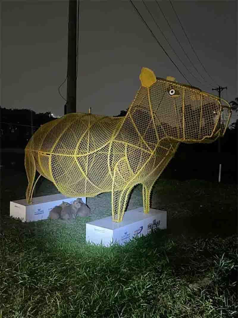 Filhotes de capivara se abrigam sob escultura do animal instalada próximo ao rio Pinheiros, em SP