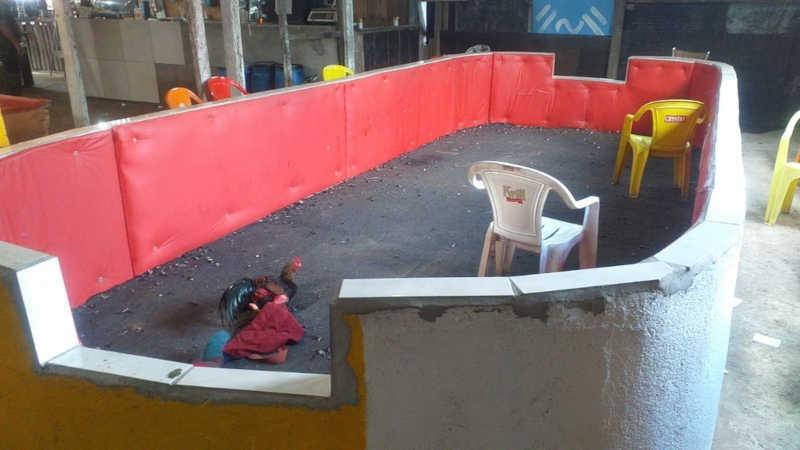 Rinha de galos acontecia no bairro México 70, em São Vicente, SP — Foto: Reprodução/Polícia Militar