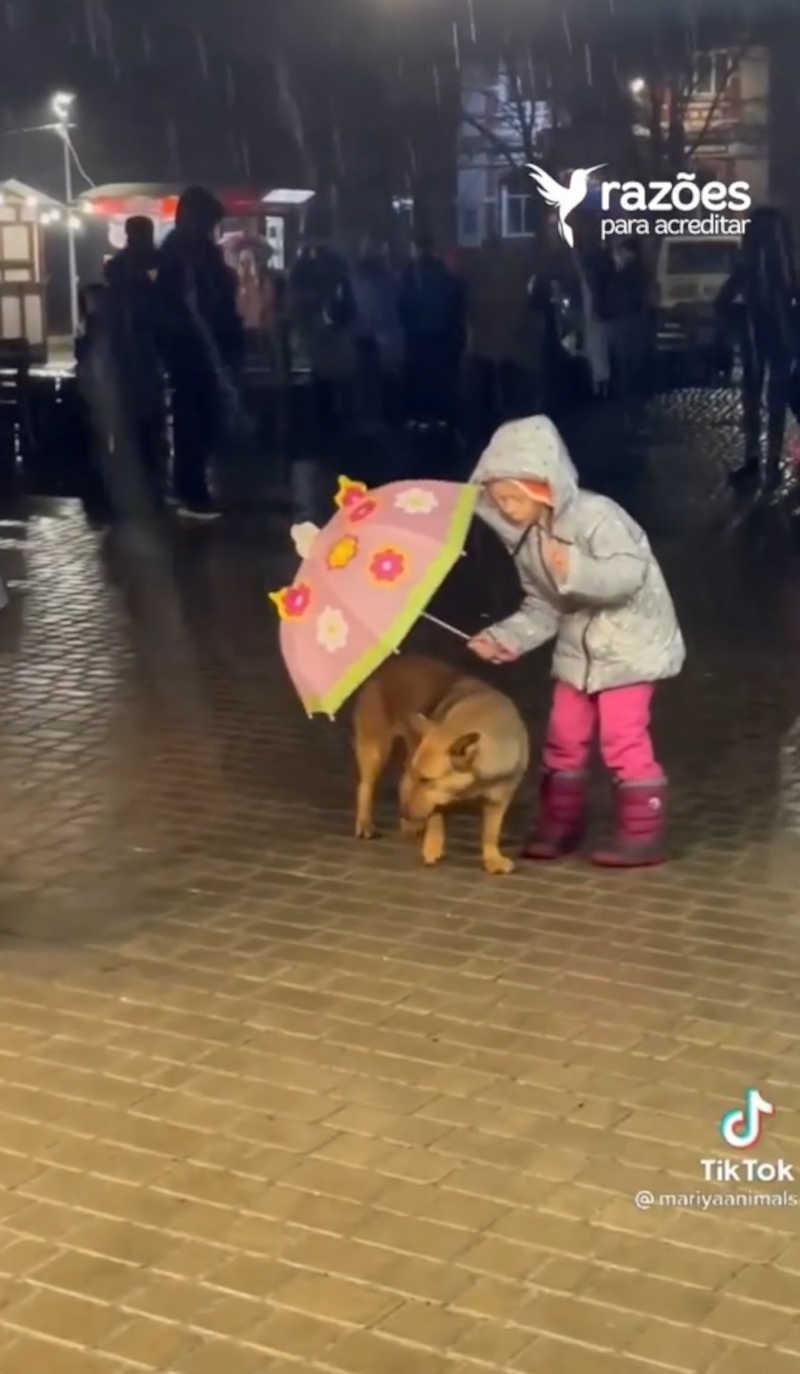 Menina cede seu guarda-chuva para proteger cachorrinho de rua que estava se molhando