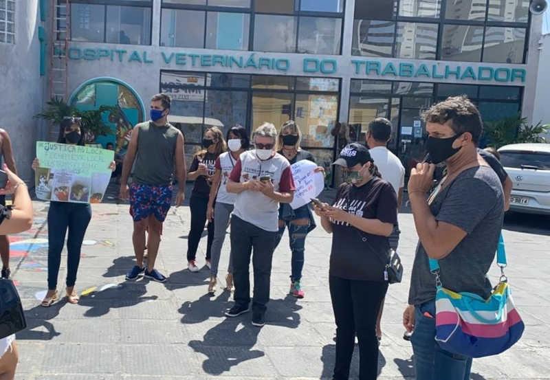 Tutores de cães e gatos fizeram protesto, em maio, em frente ao Hospital Veterinário do Trabalhador (HVT), em Maceió — Foto: Arquivo pessoal