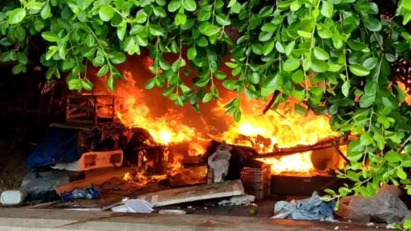 Incêndio atinge 'colônia' de gatos no bairro de Piatã, em Salvador — Foto: Reprodução/Redes Sociais