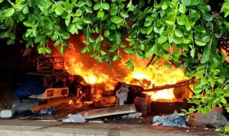 Incêndio atinge 'colônia' de gatos no bairro de Piatã, em Salvador, BA