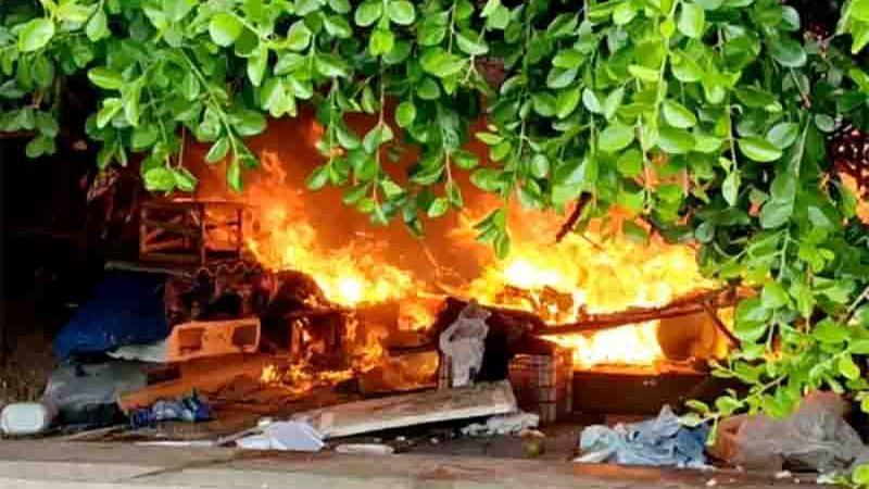 Incêndio atinge 'colônia' de gatos no bairro de Piatã, em Salvador. Foto: Reprodução/Redes Sociais