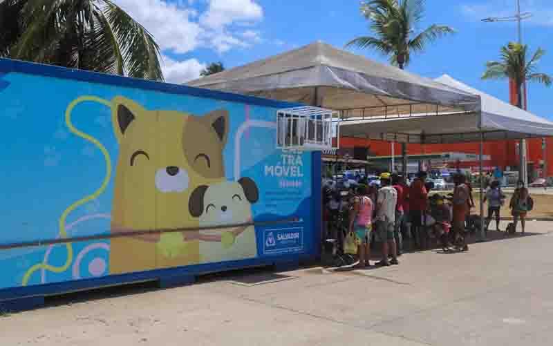 Castramóvel, em Salvador. Foto: Foto: Bruno Concha/ Secom