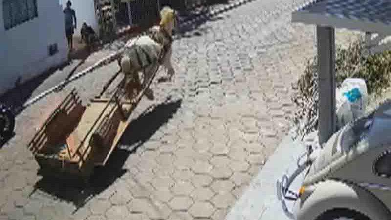 PM 'persegue' cavalo em carroça que corria por ruas de Inhumas. Foto: Reprodução/TV Anhanguera