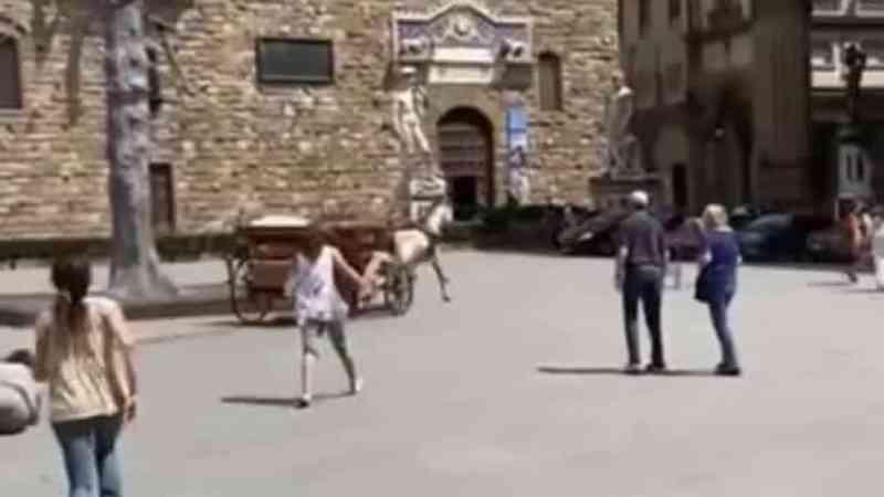 Farto de puxar carruagem, cavalo revolta-se e foge em plena praça