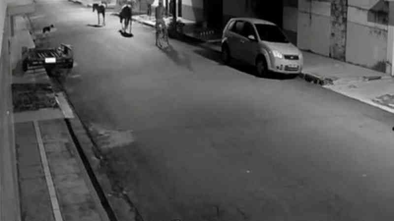 Homem é flagrado perseguindo e torturando dois cavalos em São Luís; um dos animais morreu. — Foto: TV Mirante