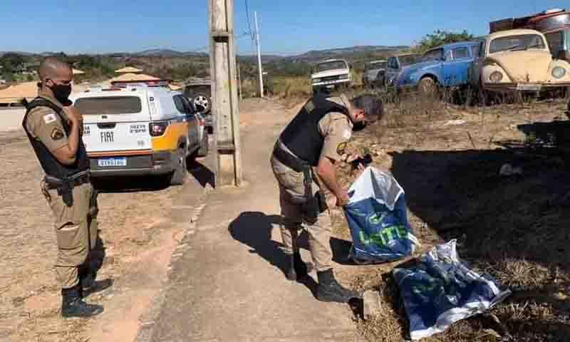 A polícia foi acionada para investigar a matança de gatos em Piracema. Foto: Arquivo pessoal