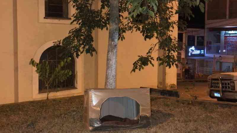 Prefeitura coloca casinhas de papelão para proteger animais de rua contra o frio em Poço Fundo, MG — Foto: Amor de Vira Lata/Prefeitura