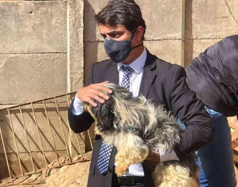 Cachorros são resgatados de casa em Santos Dumont, MG; mulher e jovem serão indiciadas por maus-tratos; veja vídeo