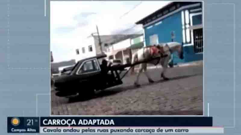 Carmo da Mata - carroça adaptada - cavalo- maus tratos - 01/06/2021. Foto: Reprodução/Tv Integração