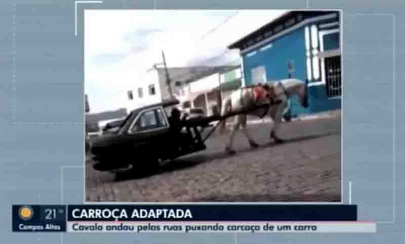 Vídeo mostra cavalo puxando metade de carro como se fosse carroça em Carmo da Mata (MG) e caso vai parar na polícia