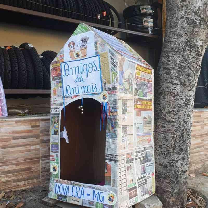 Casinhas de papelão abrigam cães de rua — Foto: Amigos dos Animais Nova Era/Divulgação