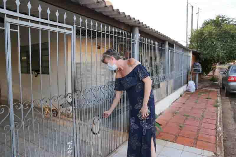 Portão da casa de Rosen é aberto e gatos passam pelas frestas. Foto: Paulo Francis