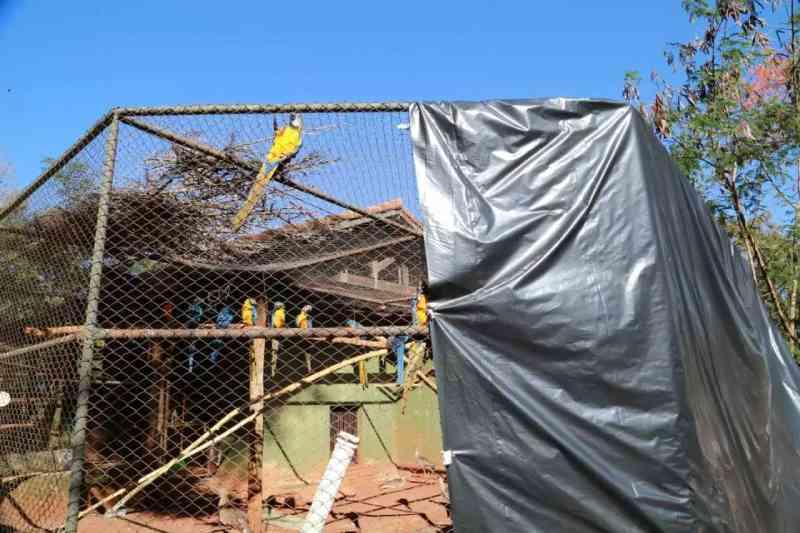 Lonas usadas como corta vento para proteger as aves abrigadas. (Foto: Kísie Ainoã)
