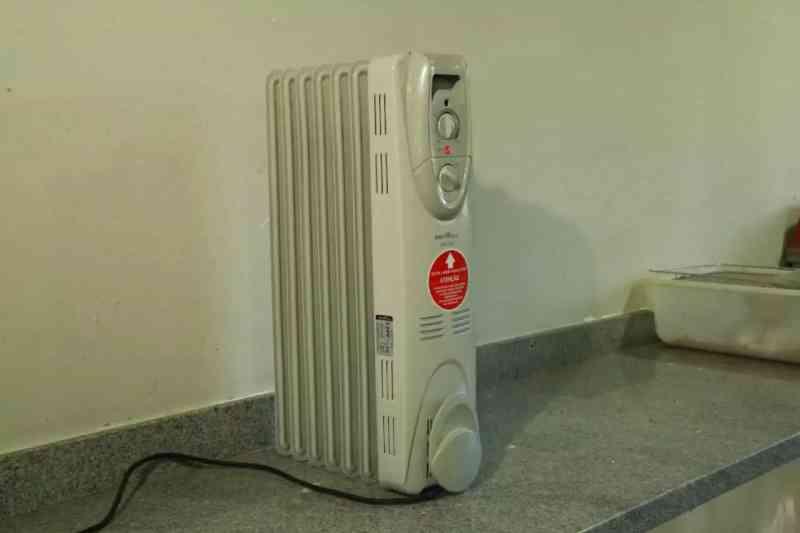 Aquecedores garantem temperaturas mais amenas nos abrigos dos animais. (Foto: Kísie Ainoã)
