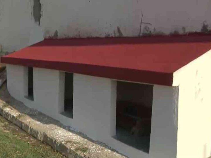 """Marisete e o marido, Lucas Martins, também de 58 anos, construíram um abrigo de alvenaria na calçada de casa que decidiram chamar carinhosamente de """"cãodomínio"""". — Foto: Arquivo Pessoal"""