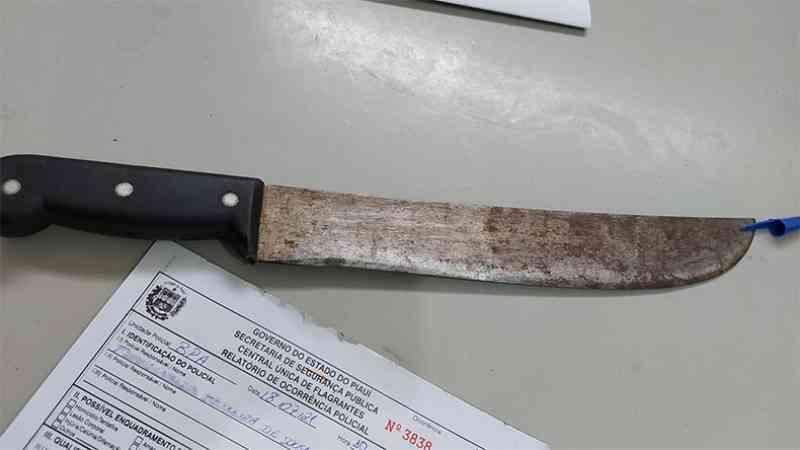 Gato é morto a golpes de faca após entrar em casa de vizinho em Teresina, PI