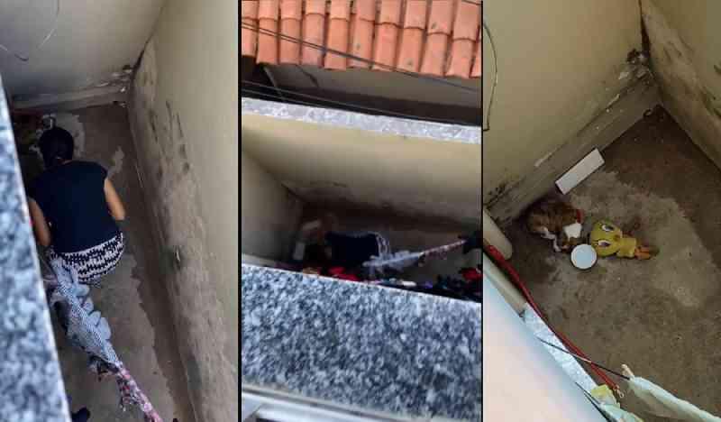 Mulher é filmada por vizinhos agredindo filhote de cachorro em Campo Maior, no Piauí