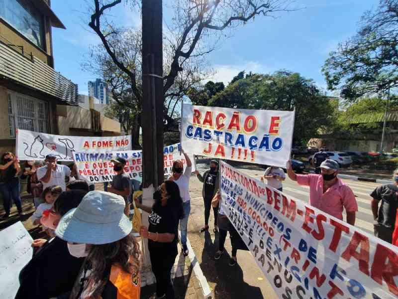 Protetores de animais fazem manifestação em frente à Prefeitura de Foz do Iguaçu, PR