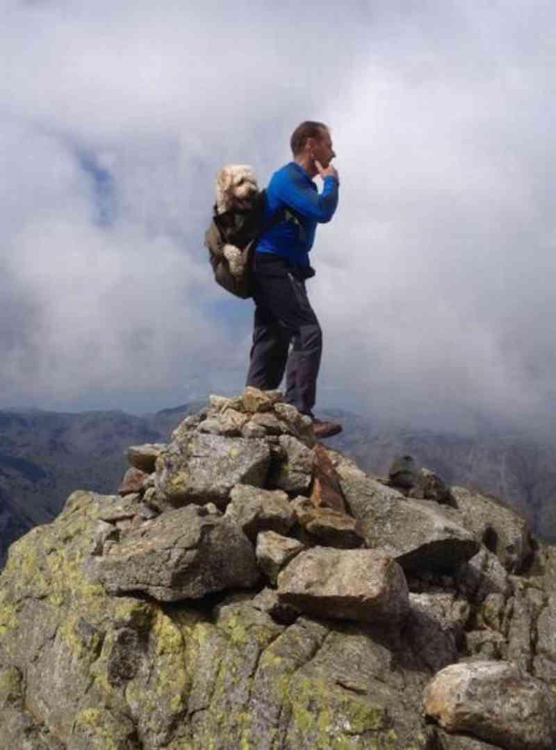 Carlos e Monty em outro momento na montanha preferida do seu cão. Foto: Reprodução/Facebook