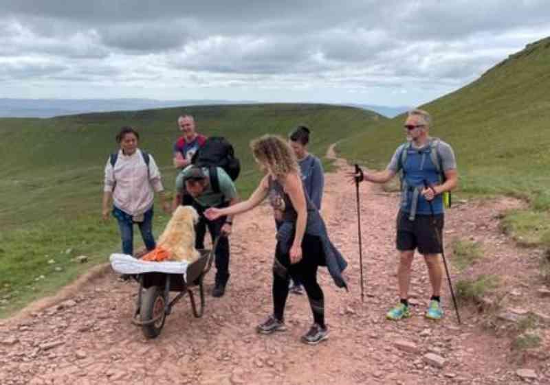 Caminhantes brincam com Monty na subida da montanha galesa. Foto: Reprodução/Facebook