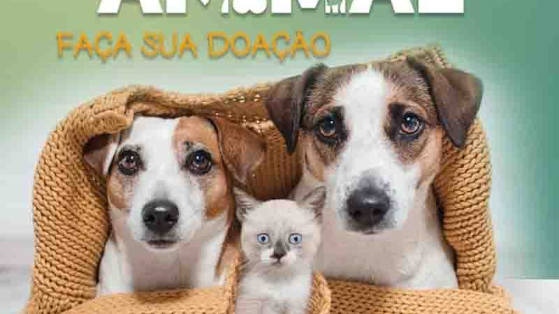 Campanha Agasalho Animal em Volta Redonda. Foto: Divulgação