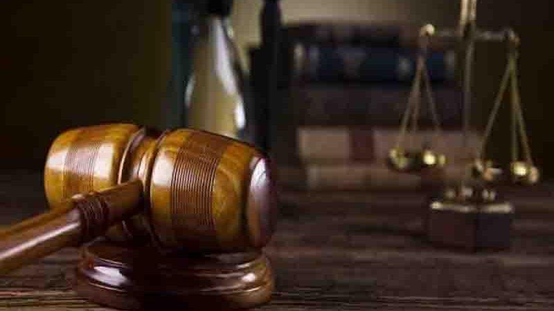 2ª Câmara Criminal mantém condenação de homem que matou cachorro com barra de ferro, em RO