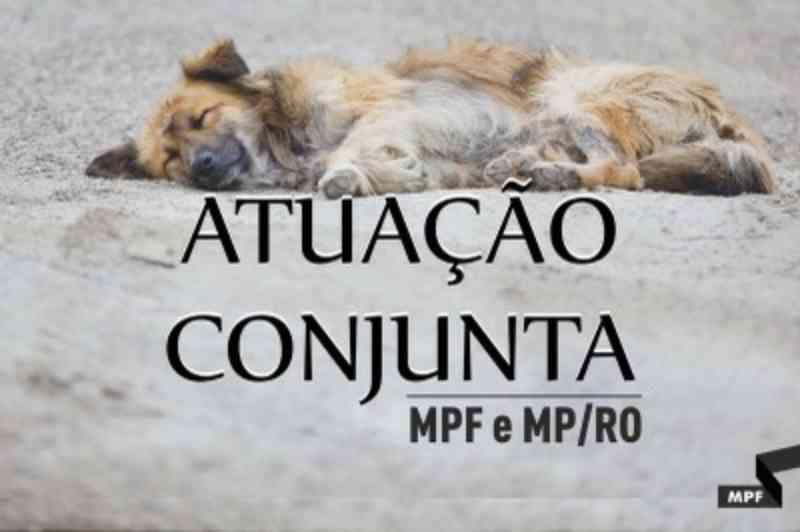 MPF e MP/RO pedem informações ao Conselho de Veterinária sobre denúncia contra ação voluntária de castração