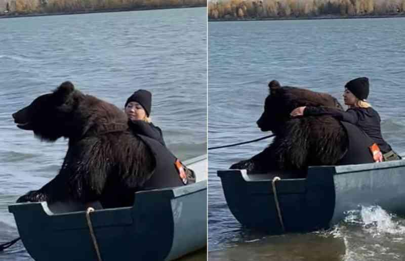 Mulher viraliza ao pescar com urso resgatado de parque falido