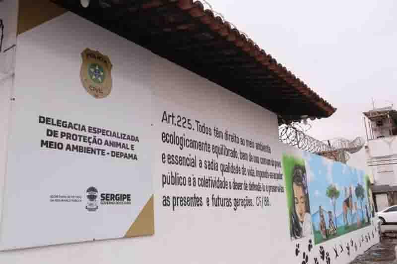 Polícia Civil apura denúncia de que condomínio em Aracaju (SE) teria aprovado morte de animais durante assembleia