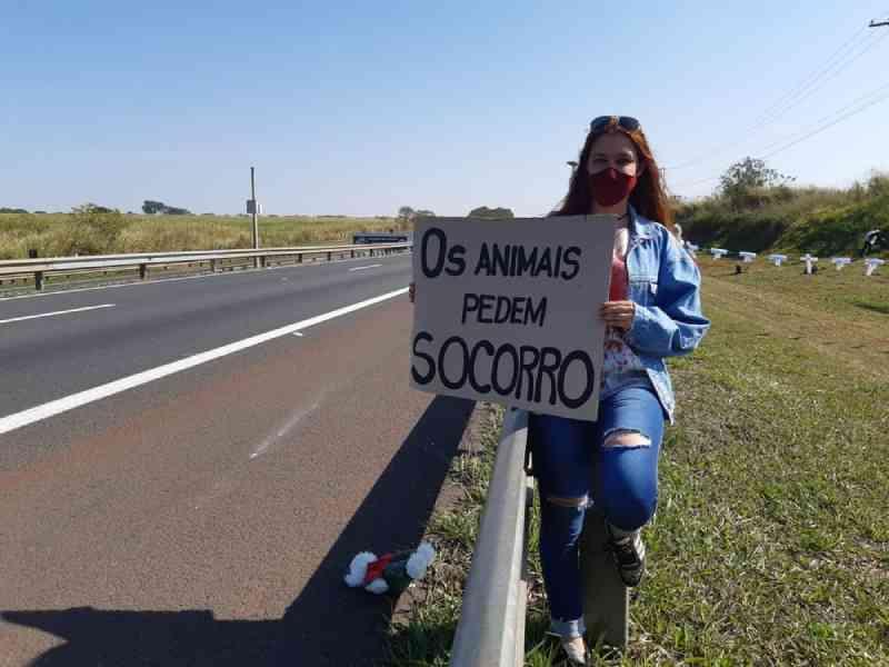 Grupo protesta por implantação de passagem para animais na Rodovia Zeferino Vaz, em Paulínia, SP