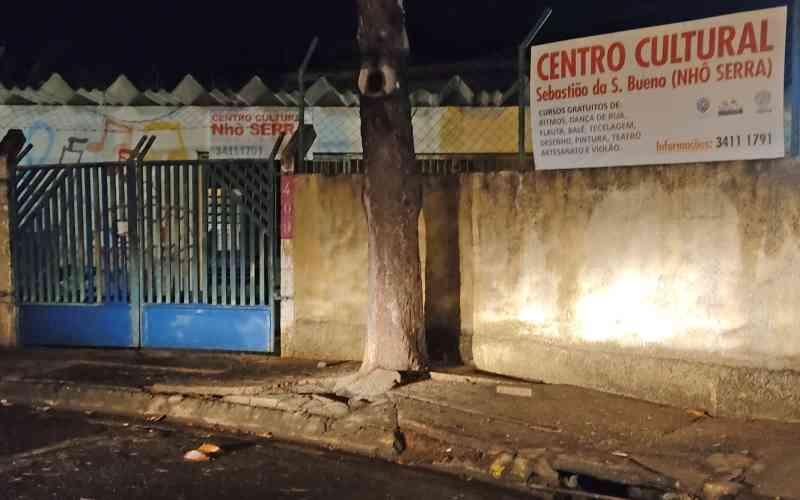 Protetora pede ajuda para cuidar de núcleo de gatos no Nhô Serra, em Piracicaba, SP