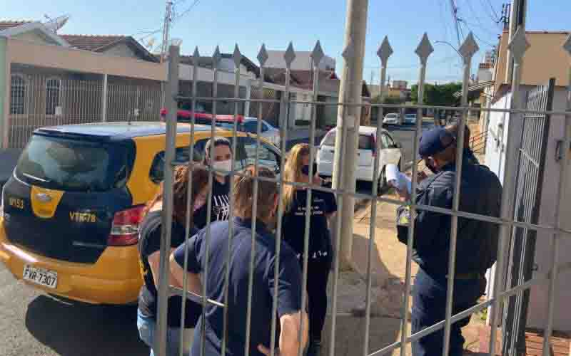 Cadela que sofria abuso psicológico é resgatada em Piracicaba, SP
