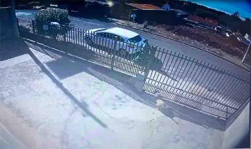 Tutor registra boletim de ocorrência após coletor de lixo ser flagrado jogando pedra em cachorro; vídeo