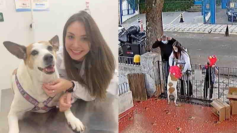 Cadela teve roupa levada do portão e foi presenteada por veterinária em Sorocaba. Foto: Arquivo pessoal