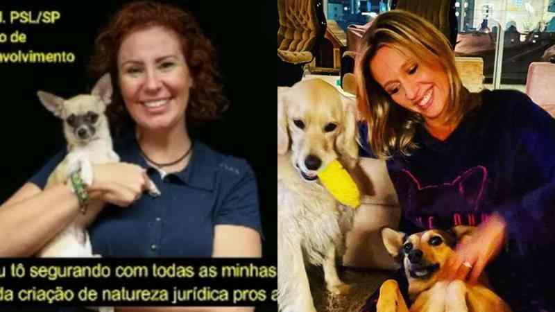 Em áudio, deputada Carla Zambelli diz que 'segura com todas as forças' PL em defesa dos animais; ativista critica: 'canalhice'