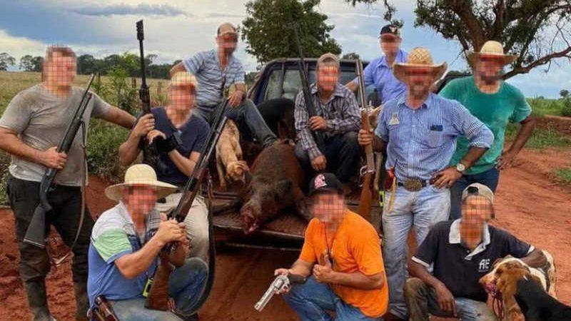 Grupos com milhares de usuários compartilham registros de animais mortos ilegalmente, venda de armas e piadas com a fiscalização do Ibama.