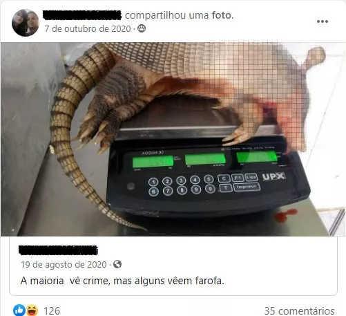 Caçadores ironizam o abate ilegal de animais em grupos de Facebook. Reprodução/ Facebook