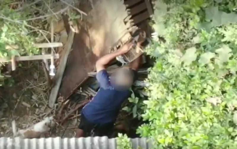 Homem é visto por drone soltando aves silvestres para fugir de flagrante da PM em Varginha, MG