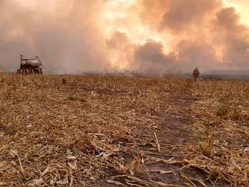 Incêndio atinge uma área de fazendas em Dom Aquino há quase uma semana e é combatido por bombeiros — Foto: Corpo de Bombeiros de Mato Grosso