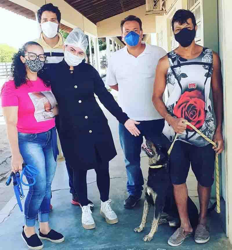 Animais castrados por unidade móvel são colocados para adoção em Petrolina, PE