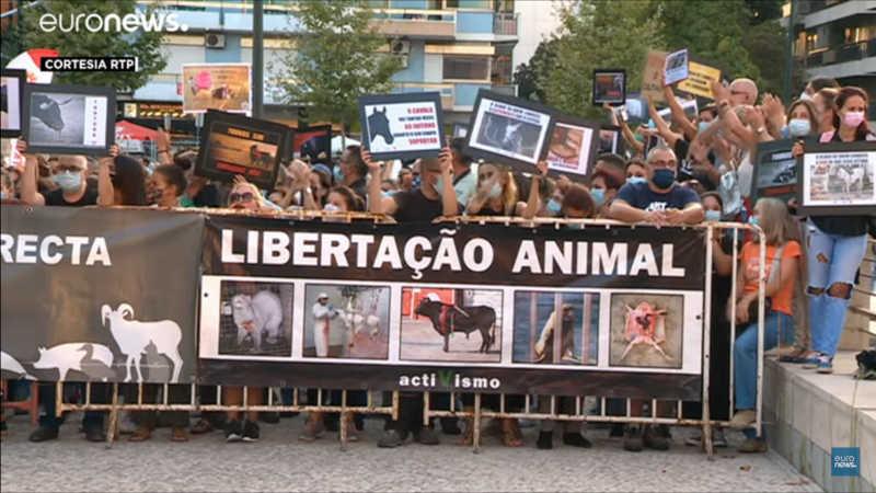 Corrida de toiros em Lisboa relança discussão sobre direitos dos animais
