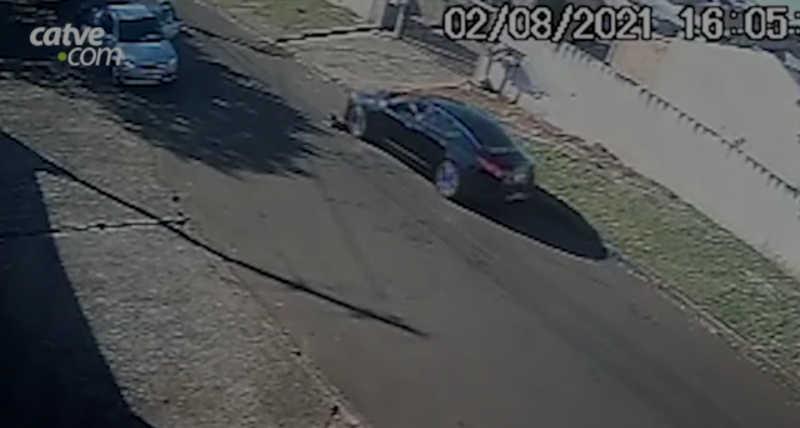 Câmera flagra cachorra sendo atropelada em Cascavel, PR; condutor pode responder por maus-tratos