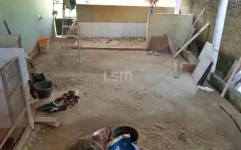 Polícia liberta 26 animais de canil clandestino no bairro Itaipuaçu, em Maricá, RJ