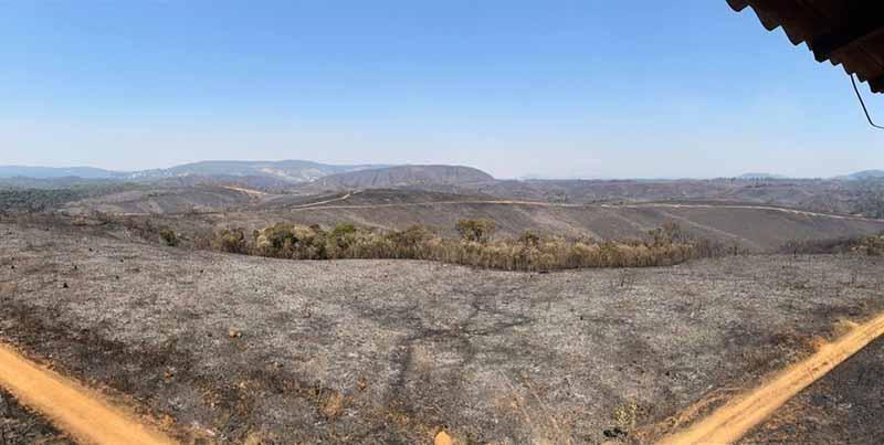 Parque Florestal do Juquery após incêndio que queimou vegetação do cerrado — Foto: Divulgação/Polícia Militar Ambiental