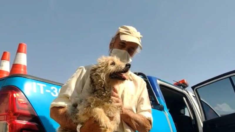 Morador de rua reencontra cãozinho na saída da internação por Covid em São Carlos, SP
