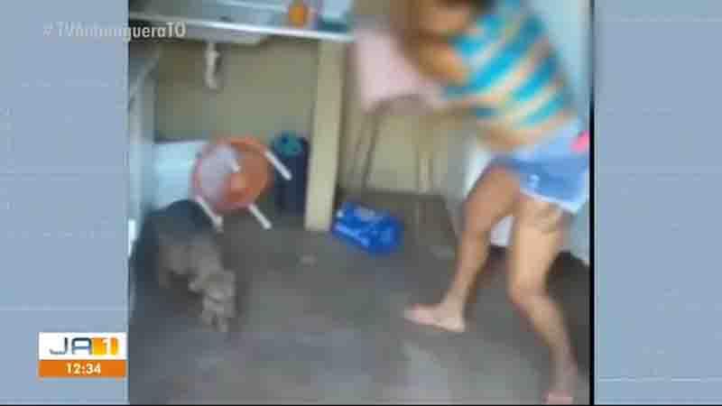 Mulher bateu em cachorro com pedaço de madeira. Foto: Reprodução/TV Anhanguera