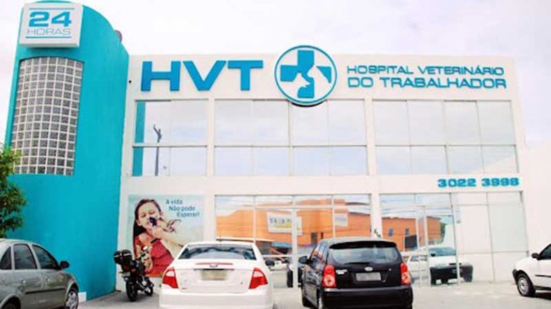 6ª Vara Criminal mantém monitoramento eletrônico de veterinário e dono do HVT
